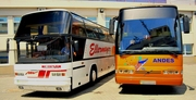 Пассажирские перевозки автобусами еврокласса на 49 мест.
